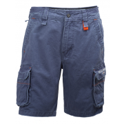 Helly Hansen mjolnir short